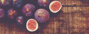 figs-1_1280-500